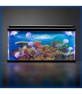Akwarium z meduzami