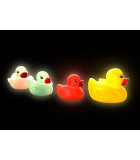 Rodzinka świecących kaczek