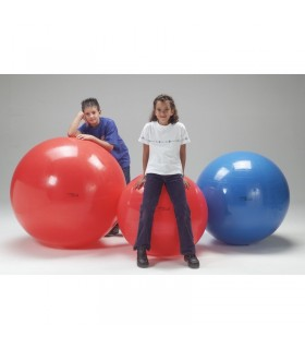 Piłka rehabilitacyjna Gymnic 120 cm