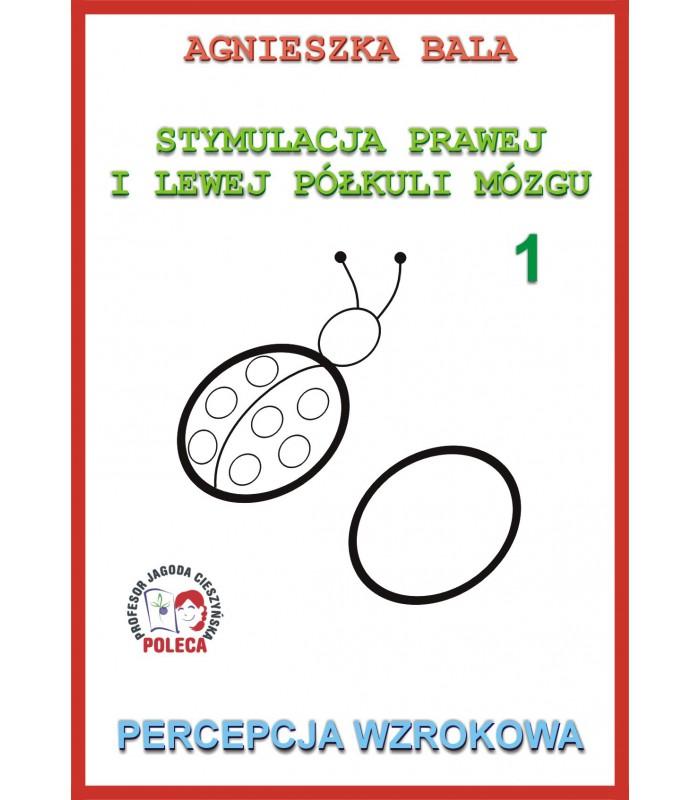 Zeszyt ćwiczeń 1, Percepcja wzrokowa
