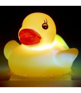 Świecące zwierzątka wodne