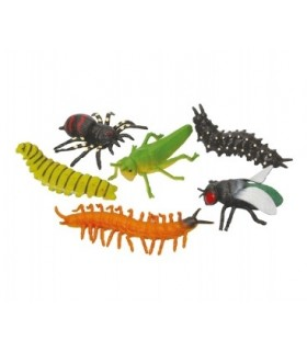 Rozciągliwy owad