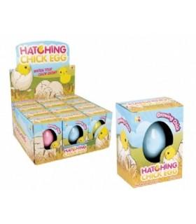 Piskle w jajku