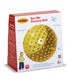 Sensoryczna przezroczysta piłki (18 cm)