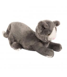 Obciążeniowy kot